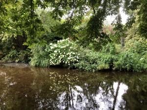 2-mount-usher-gardens-vattendraget-Vartry