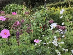 9-mount-usher-gardens-blommor