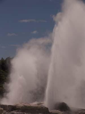 Geysir i Rotoruaområdet.