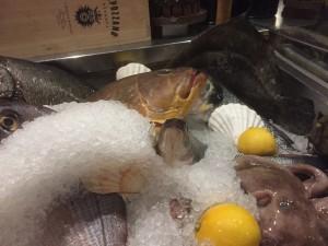 piemonte-fiskar